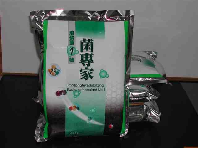 Phosphate-Solubilizing Bacteria Inoculant No.1