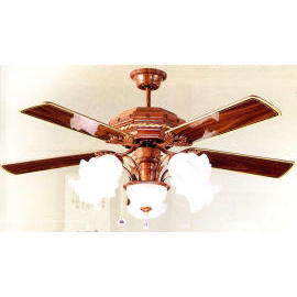 Lighting: Ceiling Fan Light