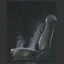 * Vehicle Seats (* Сиденья транспортных средств)