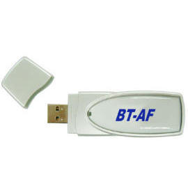 Bluetooth Adapter & Flash