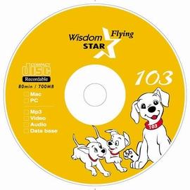 CD-R,cd-recordable,blank cd-r,media,princo (CD-R, CD-Recordable, пустой CD-R, СМИ, Princo)