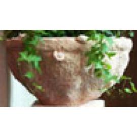 Conch Pot
