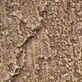 Enviromentalistic Soften Sandstone