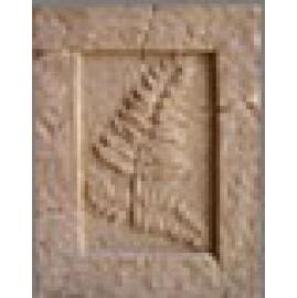 Plant Fossil Board