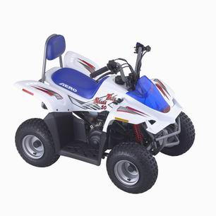 Mini ATV- Tiger Shark 50CC (Мини ATV-Tiger Shark 50CC)