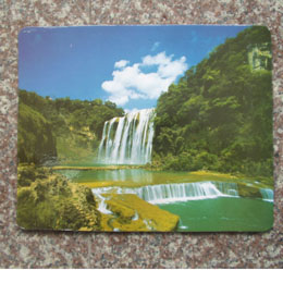 MOUSE PAD (MOUSE PAD)
