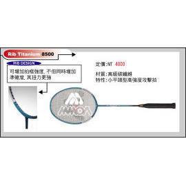 badminton racket (Бадминтон ракетки)