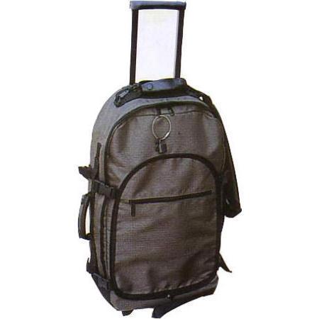travel case (футляр для транспортировки)