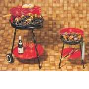 Charcoal & Gas Grill, BBQ Accessories