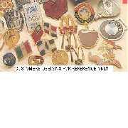 Badges and Emblems (Значки и эмблемы)