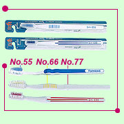 No.55 Pad printed Toothbrush