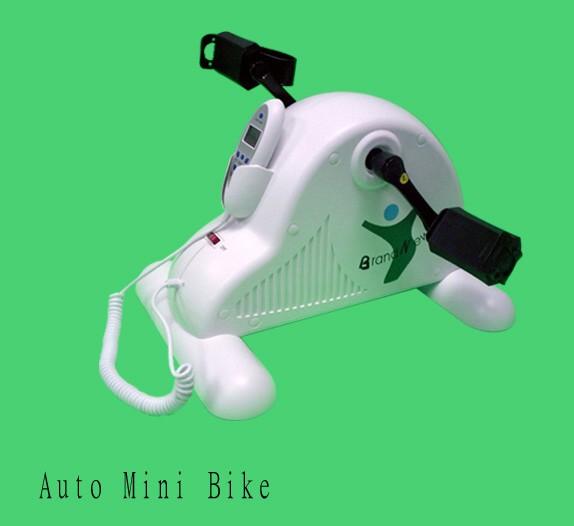 Auto Mini Bike