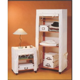 wardrobe (гардероб)