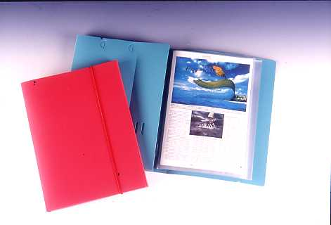 CLEAR BOOK & DOCUMENT CASE 20P , A4