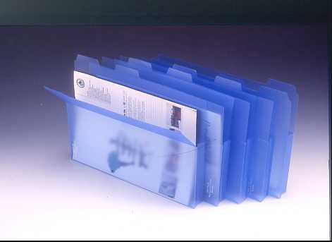 (LUXINDEX) CARRY WALLET , A4 ; SEMI-TRANSLUCENT