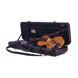 Auto dehumidifying case for violin