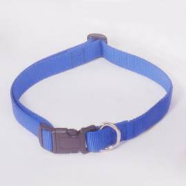 Adjustable Dog Collar with Therapeutic Magnets