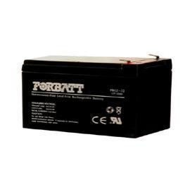 FORBATT NP Battery (FORBATT batterie NP)