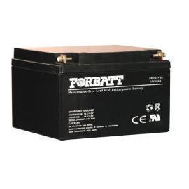 FORBATT NP Battery