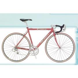 Magnesium road bike,bicycle (Магний дорожного велосипедов, велосипедов)