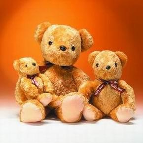 Golden Teddy (Golden Teddy)