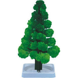 CD-021G Magic Tree Green (CD-021G Magic Tr  Gr n)