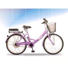 Electric City Bike (Electric City Bike)