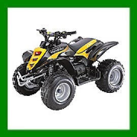 ATV(All Terrain Vehicle),MOTORCYCLE,SCOOTER