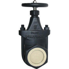 Cast Iron Clip Gate Valve