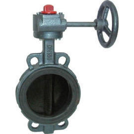 Cast Iron Butterfly Valve (Cast Iron Butterfly Valve)