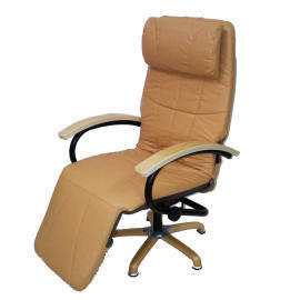 HEC-34 Vibration massage Leisure Chairs