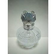 Glass Aromatherapy Bottle, 100 cc (Verre Bouteille Aromathérapie, cc 100)