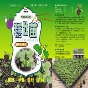 EG- hi Q Seedling Org