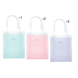 HANDCARRY BAG (HANDCARRY BAG)