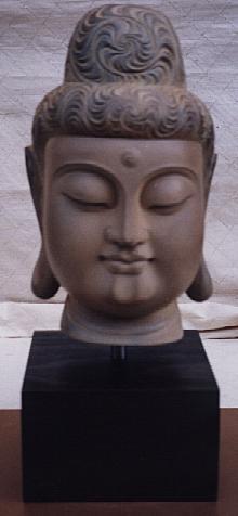 C005/ Budda`s Head
