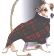 Dog Apparel (Dog Apparel)