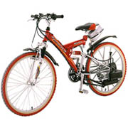 FR-01 Formula, Motor Assisted sport bicycle