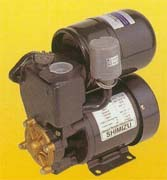 Water Pump PS-130 BIT