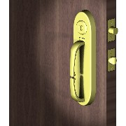 Entrance door lock