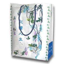 Gift bag, artist bag, promotion bag, industrial design bag, image bag, store bag (Подарочная сумка, сумка художника, продвижение сумки, сумки промышленный дизайн, изображение сумки, магазин сумки)