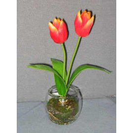 10``H POTTED TULIP (10``H горшках TULIP)