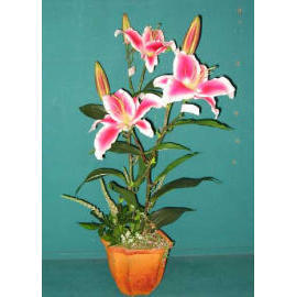 25``H LILY IN POT (25``H Lily in POT)