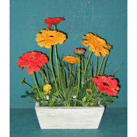11``H POTTED DAISY (11``H EMPOTE DAISY)