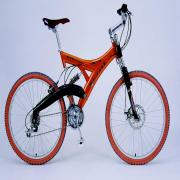 MOUNTAIN BIKE (Mountain Bike)