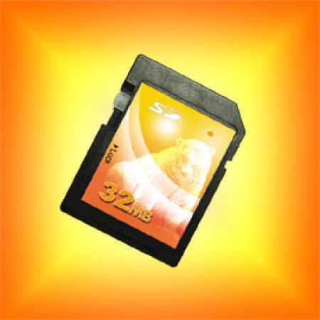 Secure Digital Card / SD Card / Flash Memory Card