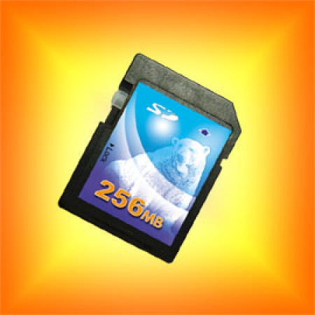 Secure Digital Card / SD Card / Flash Memory Card