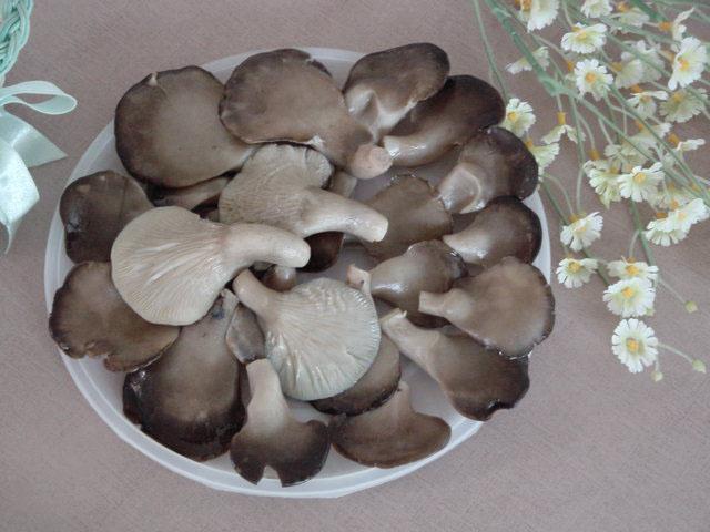 Oyster Mushroom In Brine