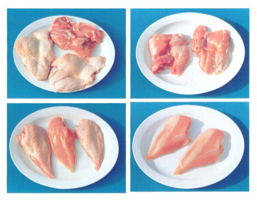 Frozen Chicken Products