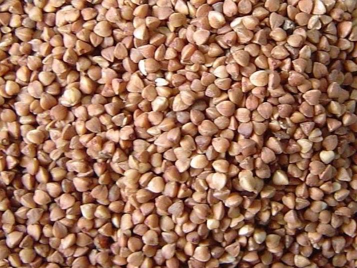 Buckwheat (Гречневая)