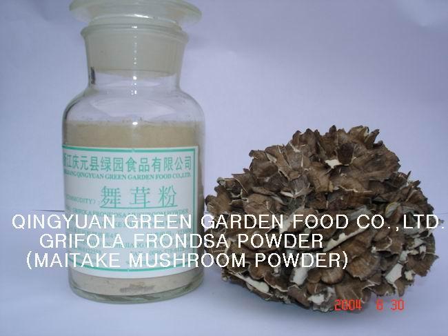 Maitake Mushroom Powder (Гриб Maitake порошковые)